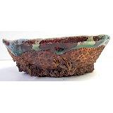 Pot pour composition de bonsaï, cactus ou plante succulente