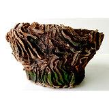 Pot pour bonsaï, cactus ou plante d'accompagnement