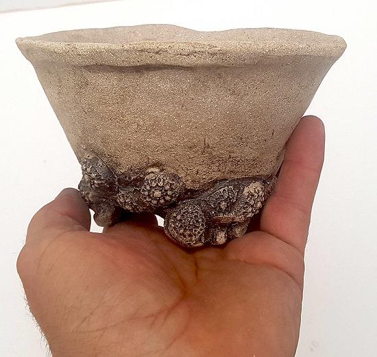Pot pour bonsaï, cactus, succulente...