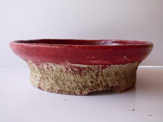 Pot pour bonsaï, shohin, cactus, ou plante succulente