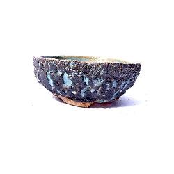 Pot pour bonsaï mame kusamono cactus ou plante succulente