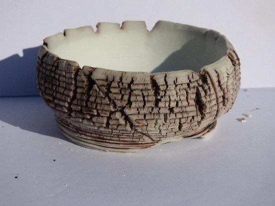 Pot bonsai Kusamono cactus succulente en porcelaine émaillé