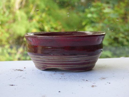 Pot rond pour bonsaï mame, plante d'accent, kusamono, cactus, plante succulente...