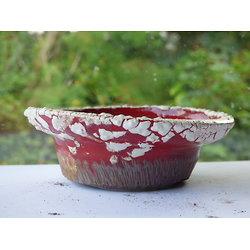 Pot pour plante d'accent kusamono, bonsaï mame, cactus ou plante succulente