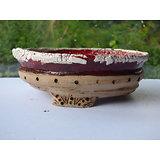 Pot pour bonsaï, cactus, plante succulente