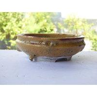 Pot en porcelaine pour bonsaï, cactus ou plante succulente