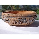 Pot pour, cactus , plante succulente ou bonsaï
