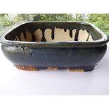 Pot en grès pour bonsaï , ou composition de cactus ou plantes succulentes