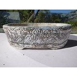 Pot ovale en grès et porcelaine pour bonsaï, cactus ou plante succulente