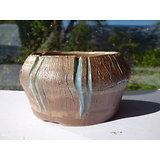 Pot pour bonsaï,  cactus ou succulente