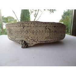 Pot rond pour bonsaï, ou composition de cactus ou plantes succulentes