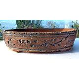 Pot ovale pour bonsaï, composition de cactus ou de plantes vertes ou succulentes