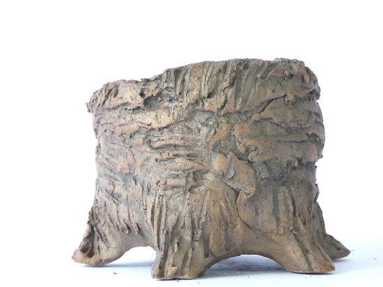 """Pot """"tronc"""" pour bonsaï mame, cactus, plante d'accompagnement ou succulente"""