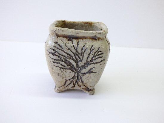 Pot pour bonsaï mame, cactus ou plante succulente
