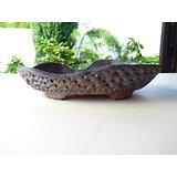 Pot ovale pour bonsaï shohin, cactus ou plante succulente