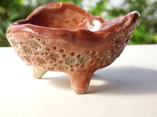Pot pour bonsaï mame, cactus ou plante succulente ou d'accompagnement