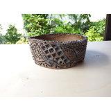 Pot pour bonsaï, cactus ou plantes succulentes