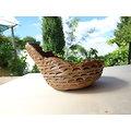 Pot coquille pour bonsaï, cactus ou plante