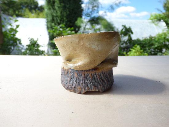 Pot pour kusamono, cactus ou plante succulente
