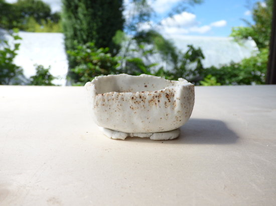 Mini pot  pour kusamono, cactus ou plante succulente