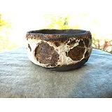 Pot pour bonsaï mame, cactus, plante d'accompagnement ou succulente