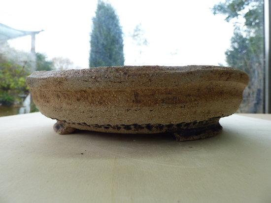 Pot rustique pour bonsaï, plante succulente ou compositions diverses