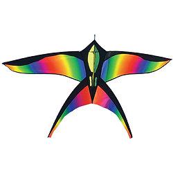 Oiseau multicolor