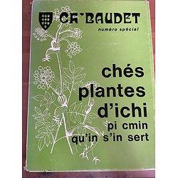 Ch' Baudet - Numéro spécial